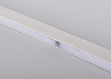 Guangdong dipimpin pabrik,LED lampu tali,12V DC LED neon light flex 4, ri-1, KARNAR INTERNATIONAL GROUP LTD