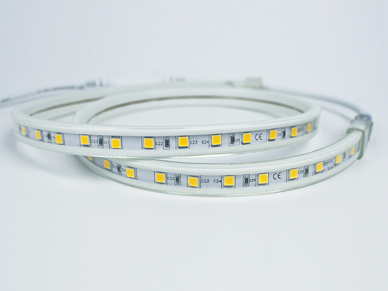 Guangdong vodio tvornicu,na vrpcu,110 - 240V AC SMD 5050 LED ROPE SVJETLO 1, white_fpc, KARNAR INTERNATIONAL GROUP LTD