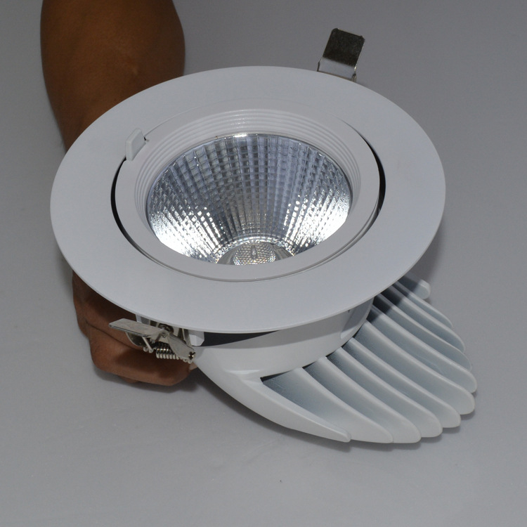 Guangdong dipimpin pabrik,mudhun cahya,50w lampu gajah recessed Led downlight 3, e_2, KARNAR INTERNATIONAL GROUP LTD