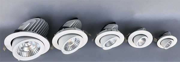 Guangdong vodio tvornicu,dolje svjetlo,15w slonova debla udubljenih Led downlight 1, ee, KARNAR INTERNATIONAL GROUP LTD